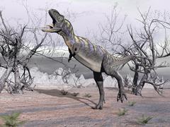 Aucasaurus dinosaur roaring in the desert. Piirros