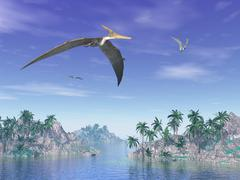 Pteranodon birds flying above islands with palm trees. Stock Illustration