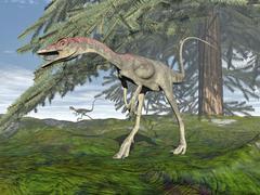 Compsognathus dinosaur under fir tree. - stock illustration