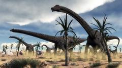 A herd of Diplodocus dinosaurs walking in a desert landscape. Stock Illustration