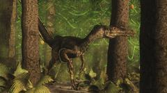 Velociraptor dinosaur stands alert in an Araucaria tree forest. - stock illustration