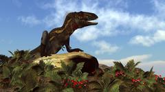 Nanotyrannus dinosaur resting on a rock. Piirros