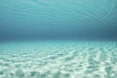 Bright sunlight ripples across a seafloor in the tropical Pacific Ocean. Stock Photos