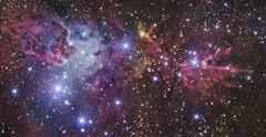 NGC 2264 - stock photo
