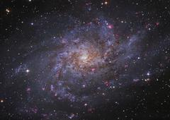 Messier 33, spiral galaxy in Triangulum. - stock photo