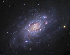NGC 2403, a spiral galaxy in Camelopardalis. - stock photo