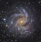 NGC 6946, a spiral galaxy in Cepheus. - stock photo