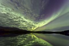 Aurora borealis over Schwatka Lake, Yukon, Canada. Kuvituskuvat