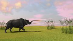 Brontotherium grazing in prehistoric grasslands. Stock Illustration