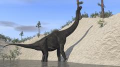 Large Brachiosaurus standing in a lake. Stock Illustration