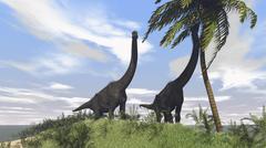 Two large Brachiosaurus grazing on a tall tree. Stock Illustration