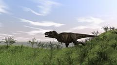 Tyrannosaurus Rex hunting in an open field. - stock illustration