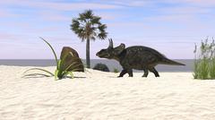 Triceratops walking along a prehistoric beach landscape. - stock illustration