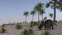 Einiosaurus grazing in a tropical climate. Stock Illustration