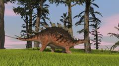 Kentrosaurus walking across a grassy field. Stock Illustration
