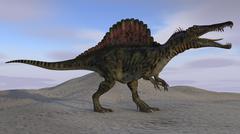 Spinosaurus on barren terrain. Stock Illustration