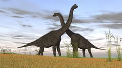 Two large Brachiosaurus in prehistoric grasslands. Stock Illustration