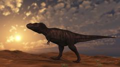 Tyrannosaurus Rex walking across a desert at sunset. Stock Illustration