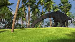 Large Brachiosaurus grazing in a tropical climate. Stock Illustration