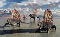 Sail-backed Dimetrodons, alive during Earth's Permian period of time. Stock Illustration