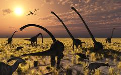Duckbill dinosaurs and large sauropods share a feeding ground. Stock Illustration