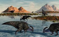 A herd of Parasaurolophus duckbill dinosaurs grazing. Stock Illustration