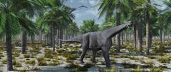 A lone herbivorous Camarasaurus dinosaur. Stock Illustration