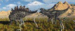 An armor plated Stegosaurus defending itself from an attacking Allosaurus. Stock Illustration