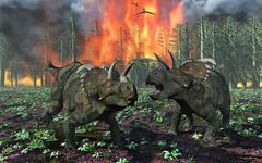 A pair of Albertaceratops running away from a forest fire. Stock Illustration