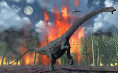 A Diplodocus sauropod dinosaur fleeing from a forest fire. Stock Illustration