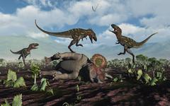 A pack of Nanotyrannus dinosaurs attacking a lone Triceratops. Stock Illustration