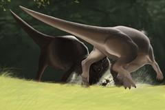 Confrontation between two Pachycephalosaurus dinosaurs. Stock Illustration