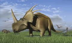 Group of dinosaurs grazing in a grassy field. Stock Illustration