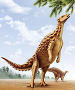A Scelidosaurus standing on its hind legs eating conifer leaves. Stock Illustration