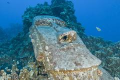 Sunken Moai, Easter Island, Chile. Stock Photos