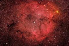 IC 1396, The Elephant Trunk Nebula. - stock photo