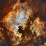 The North America Nebula and Pelican Nebula in Cygnus. Stock Photos
