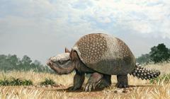 Glyptotherium arizonae, a North American megafauna. Stock Illustration
