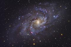 The Triangulum Galaxy - stock photo