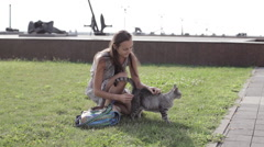 Attractive young woman patting cat in park. Stock Footage