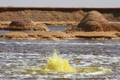 Hot spring in yellow brine lake, Dallol geothermal area, Danakil Depression, Stock Photos