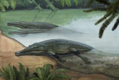 Two prehistoric Platyoposaurus stuckenbergi swim ashore. Stock Illustration