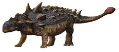 Euoplocephalus tutus, a prehistoric era dinosaur. Stock Illustration