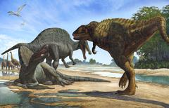 A Carcharodontosaurus invades the territory of two Spinosaurus dinosaurs. Stock Illustration