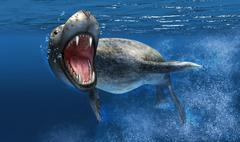 Leopard seal swimming underwater showing its sharp teeth. Stock Illustration