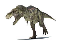 3D rendering of a Tyrannosaurus Rex dinosaur. Piirros