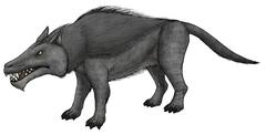 Andrewsarchus, an ungulate mammal from the Eocene epoch. Stock Illustration