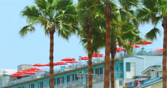 Tropical hotel with umbrellas on the roof and palm trees in Los Angeles, 4K, RAW Stock Footage
