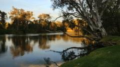 Australia Murray at Albury with bird Stock Footage