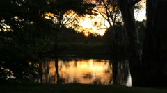 Australia Murray River at Albury evening sun on water - stock footage